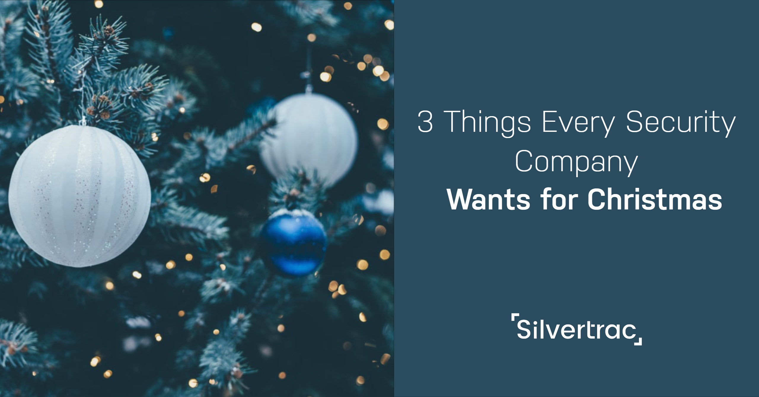 Things Security Professionals Want for Christmas